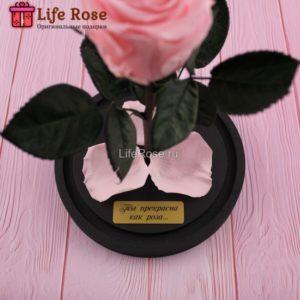 Гравировка «Ты прекрасна как Роза…»