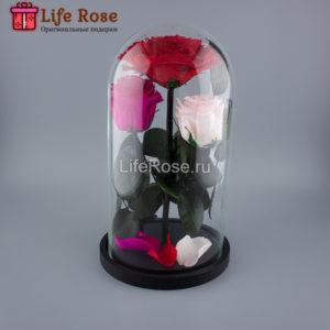 Три розы в колбе VIP